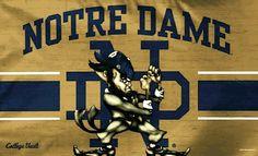 Lou Holtz, Go Irish, Irish Catholic, Notre Dame Football, Fighting Irish, Cheer, University, Clothes, God