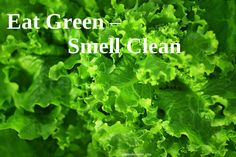 Green leafy vegetables are rich in chlorophyll which has a powerful deodorizing effect in your body. Healthy Diet Recipes, Healthy Habits, Healthy Life, Healthy Living, Health And Beauty Tips, Health Advice, Drinking Lemon Juice, Low Calorie Snacks, Vegetable Nutrition