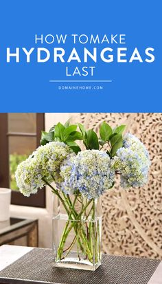 7 simple secrets for making cut flowers last longer in your home!