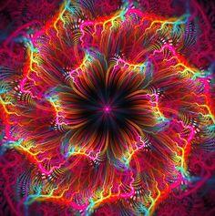 La vida es color,el color es vida! Descubre los diseños terapéuticos de las #holos y vibra diferente,más y mejor! Entra www.holoplace.net/info Te lo explicamos lluïsa y rosó