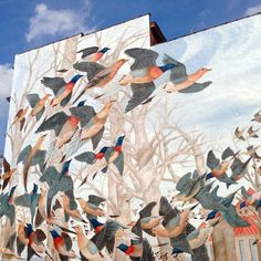 Martha, the Last Passenger Pigeon (mural by John A. Ruthven, Cincinnati). She died 9/1/2014, 100 years ago and was the last of her kind.