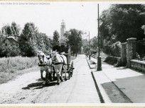 1936 táján, Maros utca, 12. kerület Budapest, Tarot, Tarot Decks, Tarot Cards