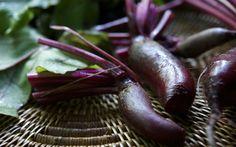 Laura Silverman upstate NY kitchen garden ; Gardenista Cylindrical Foronos