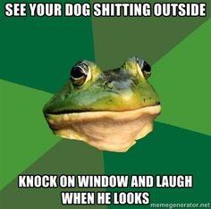 Foul Bachelor Frog Meme