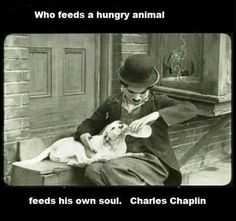 Who feeds a hungry animal, feeds his own soul - Charles Chaplin