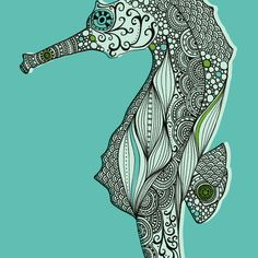 Seahorse Stretched Canvas