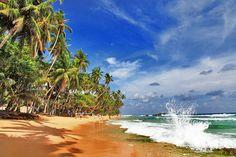 11nt Sri Lanka Tour & Flights