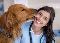 Search from 60 top Veterinarian pictures and royalty-free images from iStock. Find high-quality stock photos that you won't find anywhere else. Veterinary Surgeon, Veterinary Medicine, Veterinarian Assistant, Future Jobs, Future Career, Kiss Of Death, Work With Animals, New Times, Comparing Yourself To Others