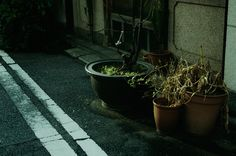 We are what we repeatedly do. #photography #street #tokyo #ahsheegrek