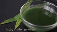 (ASMR) Pandan water extraction คั้นน้ำใบเตย - YouTube