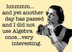 I didn't use algebra once - Google Search
