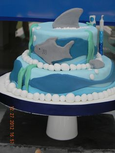 Cake from a Shark Party #shark #partycake