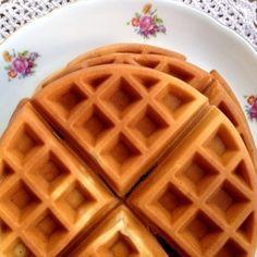 Santa Dieta   Porque aqui não tem milagre! » Arquivos » Receita de Waffle sem glúten (e sem whey)!