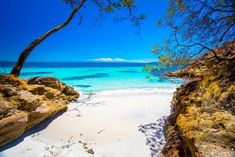 So uh hows that winter thing going Northern Hemisphere? Waving across the equator from Jervis Bay Australia - Posted by: repomonkey Western Australia, Australia Travel, Jervis Bay Australia, Cities, Landscape Pictures, Roadtrip, Photo Look, Landscape Photographers, Rafting