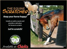 The Equine Scratcher! Horses can safely scratch without pulling hair or risking injury, and it's stimulating to horses who crib or chew from boredom.