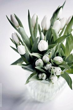 Different types of flowers with names, meanings and types of flowers with pictures #Flowertypes #TypesofFLowers #Flowers