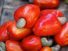 caju. Tanto a castanha quanto a polpa da fruta podem ser aproveitadas. Foto: iStock, Getty Images