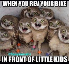 or sometimes they start crying. coinflip, really. #motorcycles