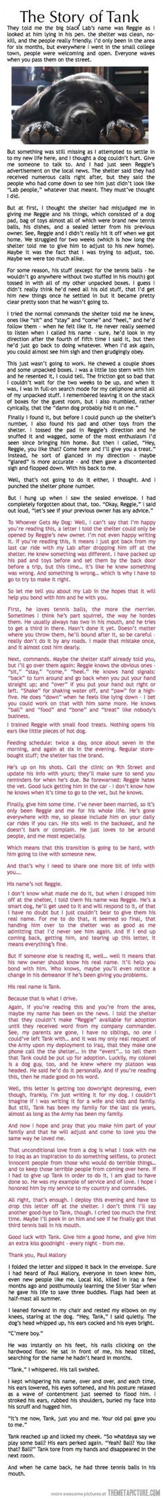 Even if you're not an animal person this is worth reading.... I'm crying right now...