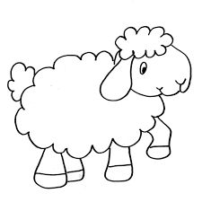 Výsledek obrázku pro černobílá ovečka