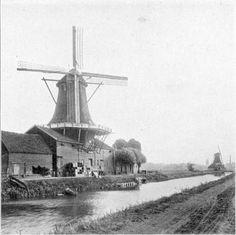 Zwolle - Oliemolen De Rodemolen (afgebroken voor de aanleg van de Ceintuurbaan) met op de achtergrond de oliemolen de Passiebloem (Vondelkade), 1914.