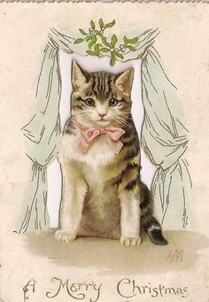 Victorian Cat with Pink Bow Under Mistletoe~Merry Christmas~E. Nister & L. Prang. Helena Maguire.