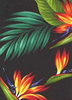 - Tropical Botanical Vintage Hawaiian Fabric Bird of Paradise flowers and leafy palm fronds cotton poplin apparel fabric. Motif Tropical, Tropical Design, Tropical Art, Tropical Birds, Tropical Flowers, Tropical Pattern, Colorful Birds, Poster Mural, Birds Of Paradise Flower