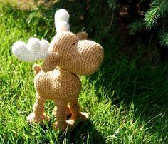 Moose! So cute