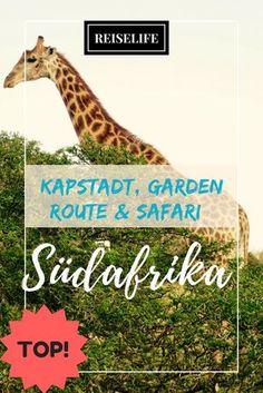 Deine perfekte Südafrika Rundreise. Kapstadt, Garden Route, Hausboot-Trip und Addo Elephant Park!