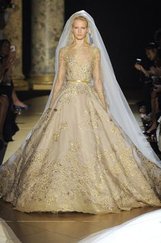 This picture does not do this dress justice. watch the runway video and you will DIE! You could literally hear people gasp as she comes around the corner. This is a piece of art. Elie Saab Couture