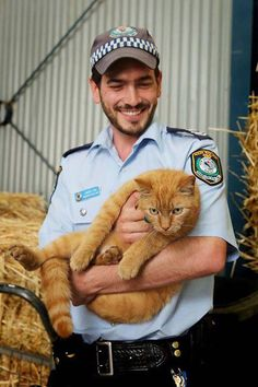 Ed The Police Cat Sleeps on the Job - We Love Cats and Kittens