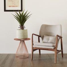 Kustom Timber Driftwood || French Oak Flooring ||