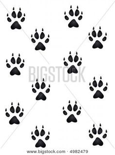 how to draw a hamster paw print