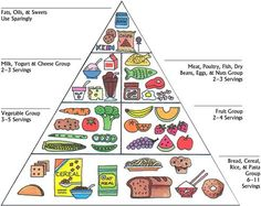 photograph relating to Food Pyramid for Kids Printable referred to as 99 Least complicated Foods Pyramid illustrations or photos within 2019 Foodstuff pyramid, Nutritious