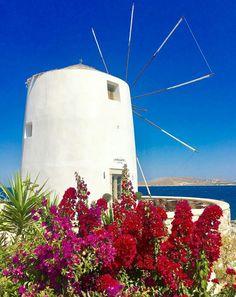 Paroikia~Paros island~Greece