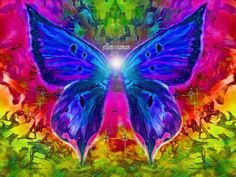 May the Wings of the Butterfly Kiss the Sun. And find your shoulder to Light on.  To bring you  Love Happiness and Joy  Today, tomorrow and beyond  --An Irish Blessing  (art;e11en♥vaman)