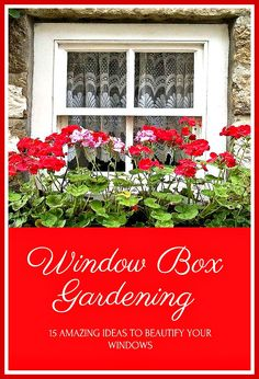 Apply these to beautify your windows. Glowing Flowers, Garden Boxes, Window Boxes, Landscaping Ideas, Christmas Tree, Windows, Landscape, Holiday Decor, Amazing