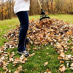Do the leaf thing.  Rake 'em up into a big pile and jump right in!