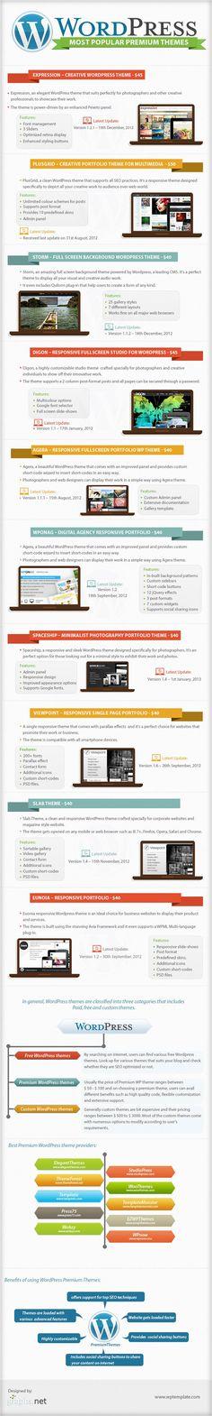 Most Popular WordPress Premium Themes, an infographic - http://hosting.ber-art.nl/most-popular-wordpress-premium-themes-an-infographic/ /@Roberta Causarano Causarano Cruz Malonda|Art Visual Design V.O.F. - #SEO