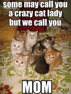 Some may call you a crazy cat lady, but we call you MOM...