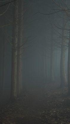 Fog, Mist, Japan