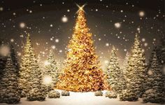 Christmas tree wallpapers, Best Christmas Tree  2013 Wallpapers-01