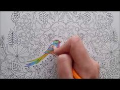 How I colour a bird (blending colours); Enchanted Forest - Johanna Basford