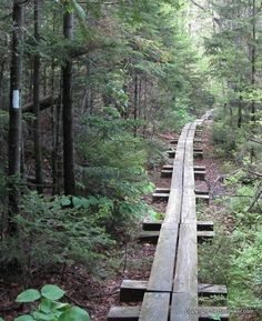 Great info on hiking Vermont's Long Trail, the oldest long distance hiking trail in the country.