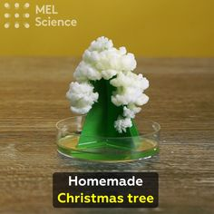 "Mothers Day Gifts Diy Discover Homemade Christmas tree Its amazing how a simple paper tree can become so stunning! Click ""Visit"" to get step-by-step instructions. Amazing Science Experiments, Science Projects For Kids, Science Crafts, Science Activities For Kids, Fun Crafts For Kids, Science For Kids, Science Daily, Science Chemistry, Chemistry Experiments For Kids"