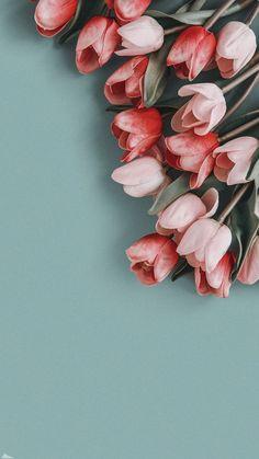Iphone Wallpaper Smoke, Flower Phone Wallpaper, Ocean Wallpaper, Homescreen Wallpaper, Iphone Background Wallpaper, Cellphone Wallpaper, Photo Wallpaper, Aesthetic Pastel Wallpaper, Aesthetic Wallpapers
