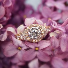 Learn About Custom Made Engagement Rings With Joseph Jewelry - rose gold diamond ring, and diamond halo