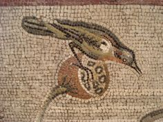 Pompeii Nile mosaic, bird detail
