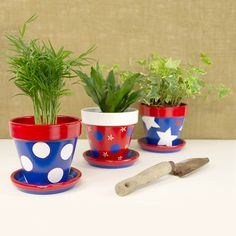 DIY Fourth Of July Flower Pots