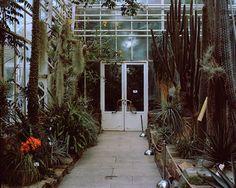 Incarcerated Nature - Daniel von Mitschke